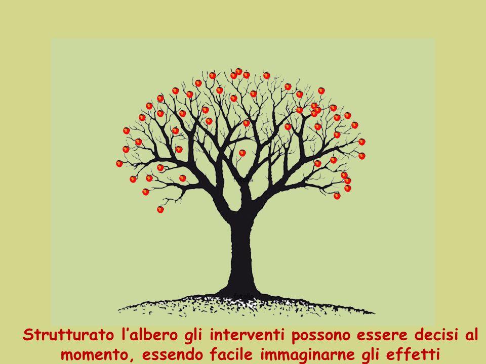 Strutturato l'albero gli interventi possono essere decisi al momento, essendo facile immaginarne gli effetti