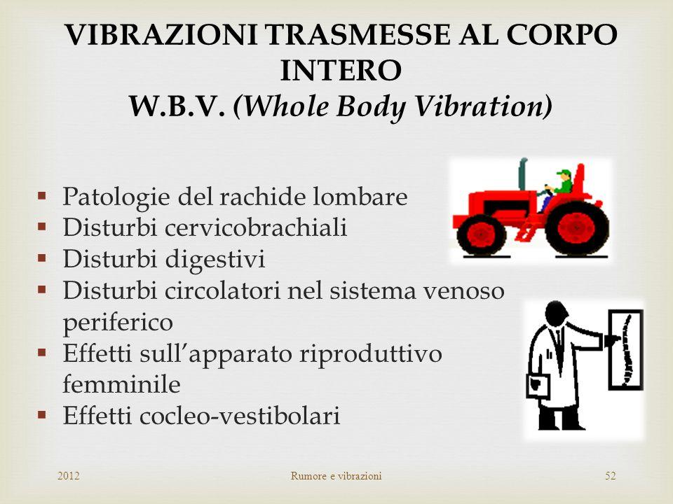 VIBRAZIONI TRASMESSE AL CORPO INTERO W.B.V. (Whole Body Vibration)