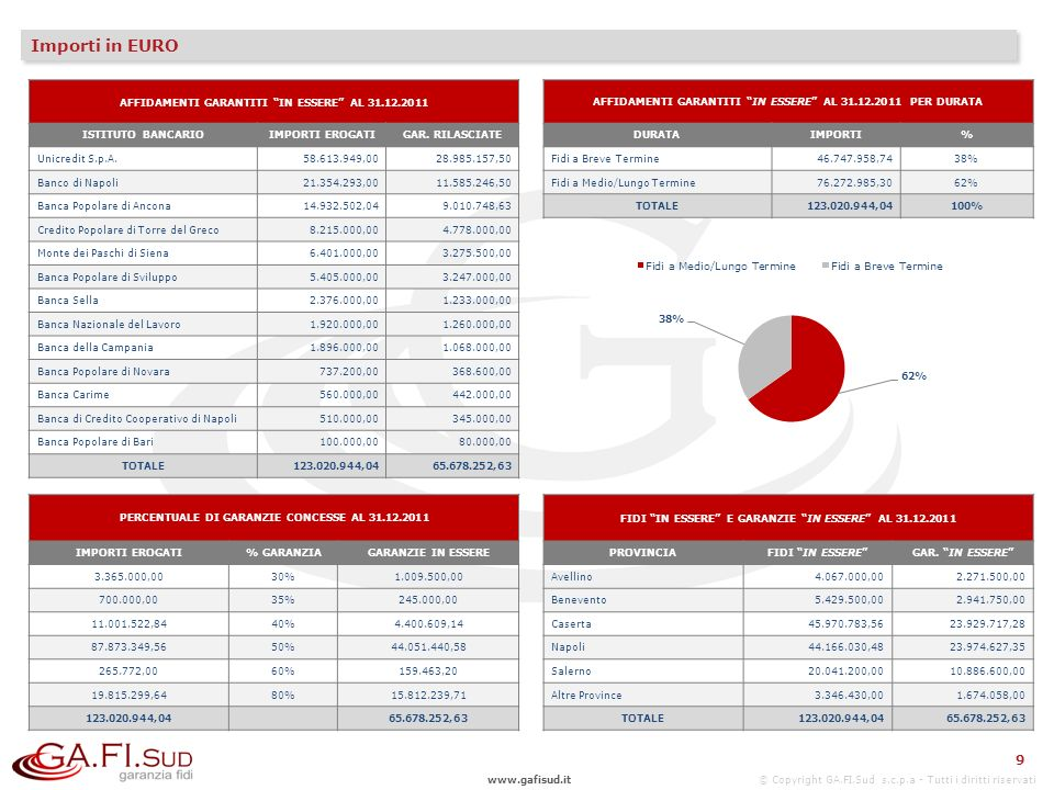 Importi in EURO 9 AFFIDAMENTI GARANTITI IN ESSERE AL 31.12.2011