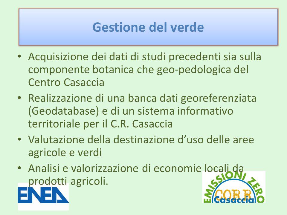 Gestione del verde Acquisizione dei dati di studi precedenti sia sulla componente botanica che geo-pedologica del Centro Casaccia.