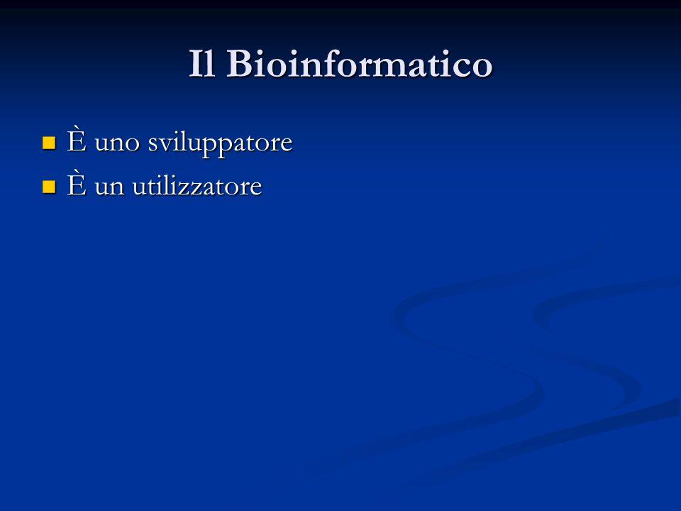 Il Bioinformatico È uno sviluppatore È un utilizzatore