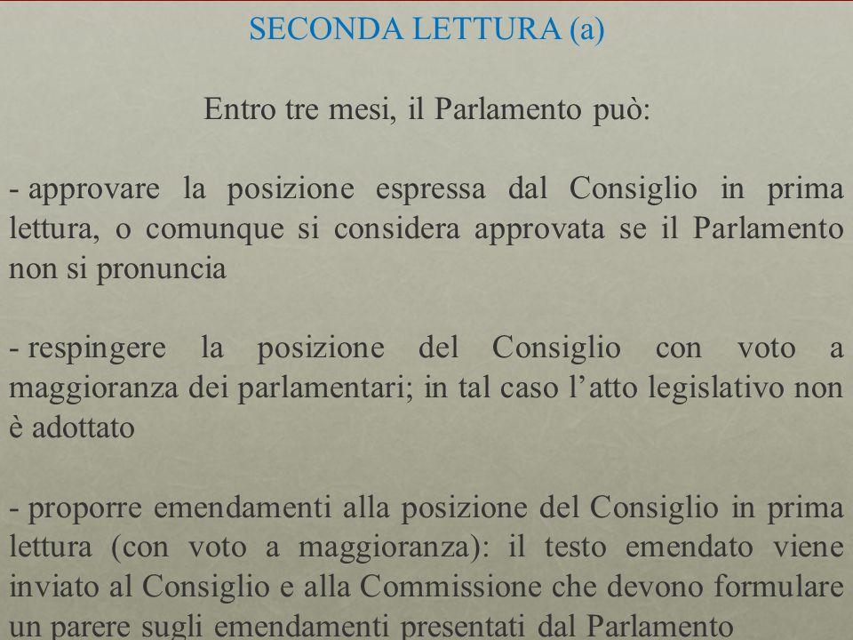 Entro tre mesi, il Parlamento può: