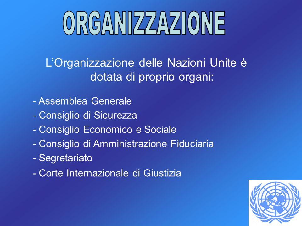 L'Organizzazione delle Nazioni Unite è dotata di proprio organi: