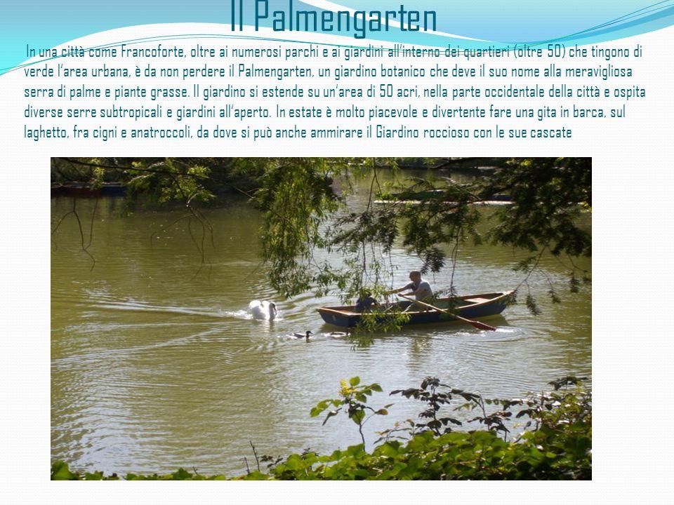 Il Palmengarten In una città come Francoforte, oltre ai numerosi parchi e ai giardini all'interno dei quartieri (oltre 50) che tingono di verde l'area urbana, è da non perdere il Palmengarten, un giardino botanico che deve il suo nome alla meravigliosa serra di palme e piante grasse.
