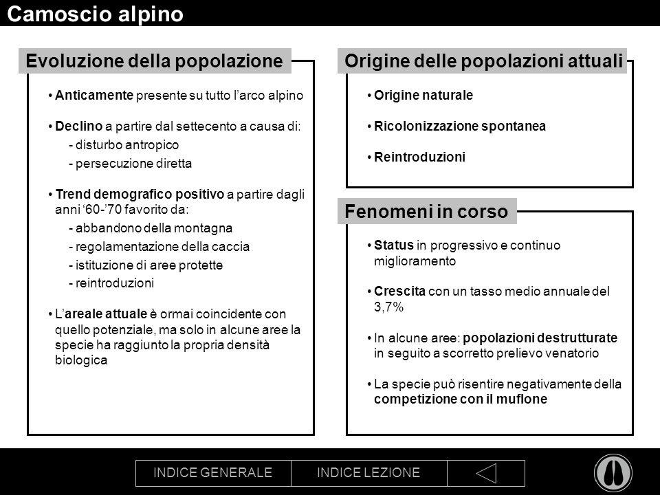 Camoscio alpino Evoluzione della popolazione