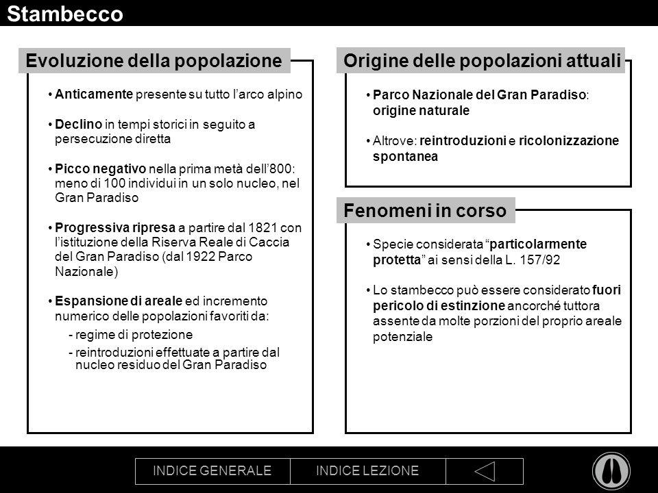 Stambecco Evoluzione della popolazione