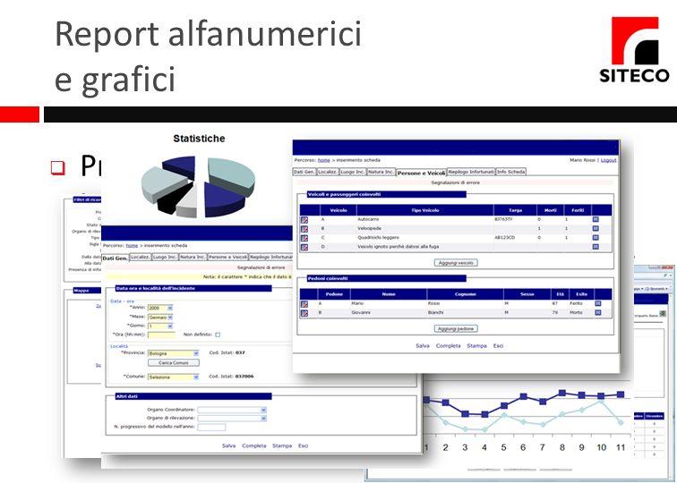 Report alfanumerici e grafici