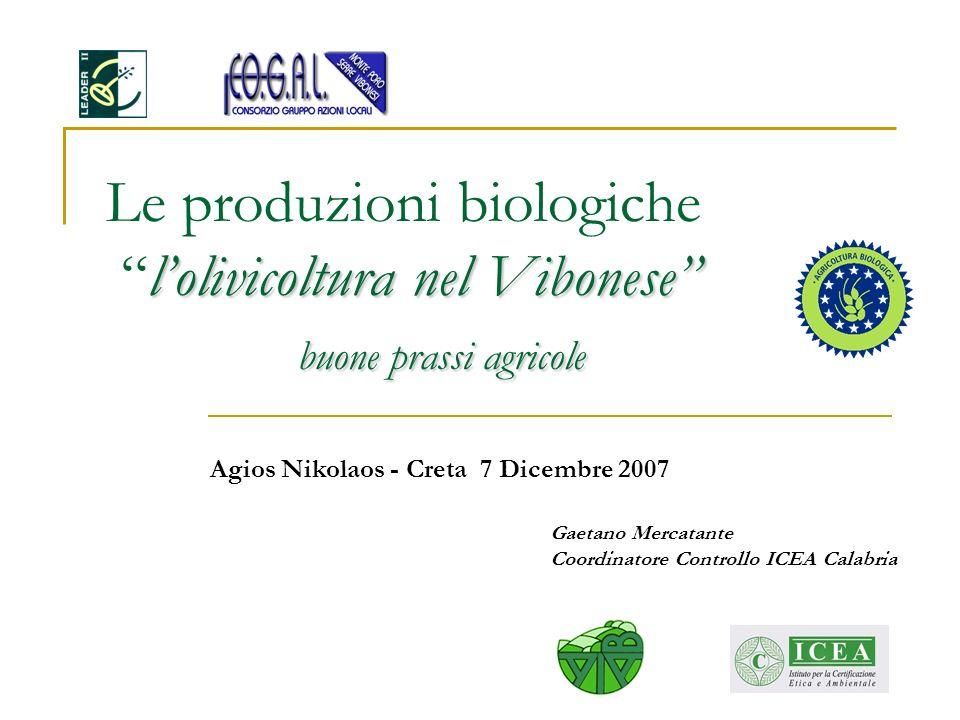 Gaetano Mercatante Coordinatore Controllo ICEA Calabria
