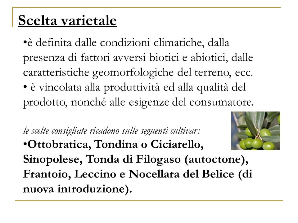 Scelta varietale