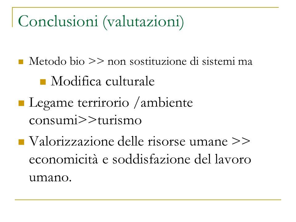 Conclusioni (valutazioni)