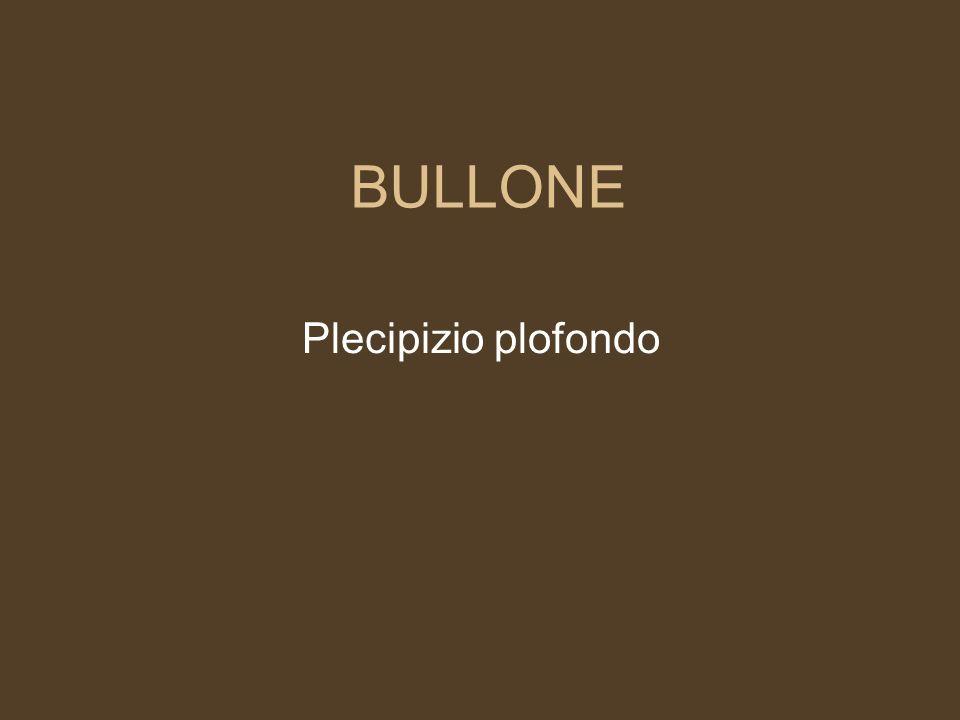 BULLONE Plecipizio plofondo