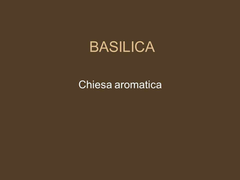 BASILICA Chiesa aromatica