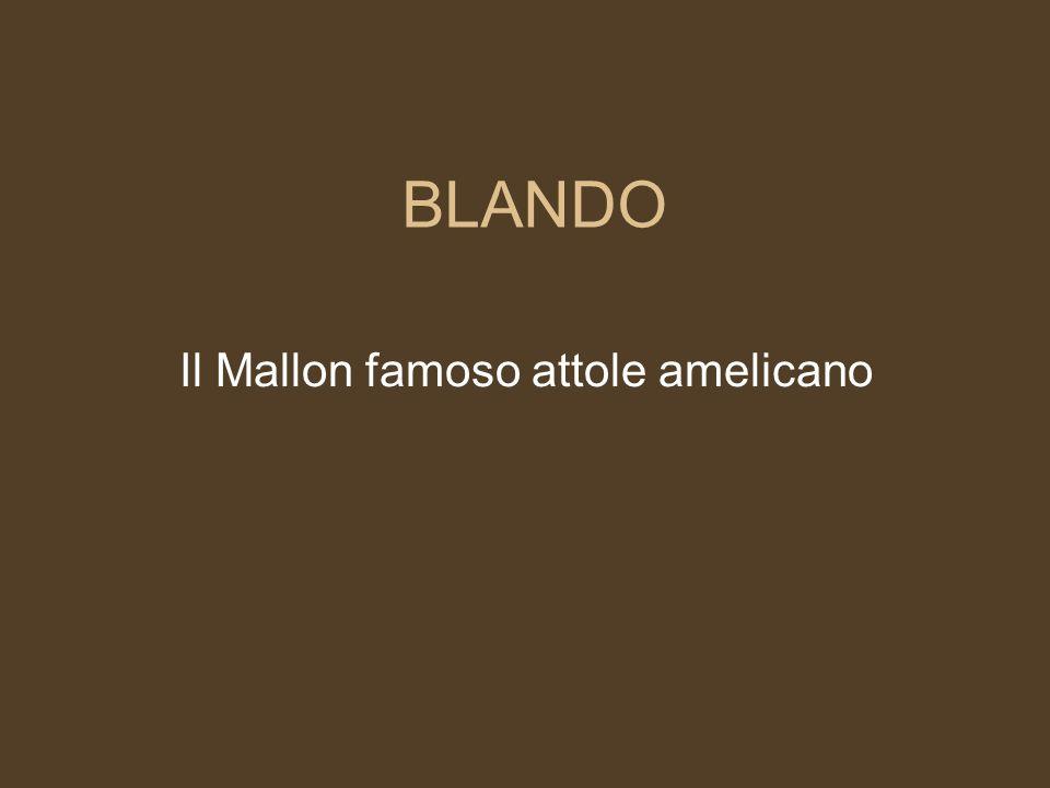 Il Mallon famoso attole amelicano