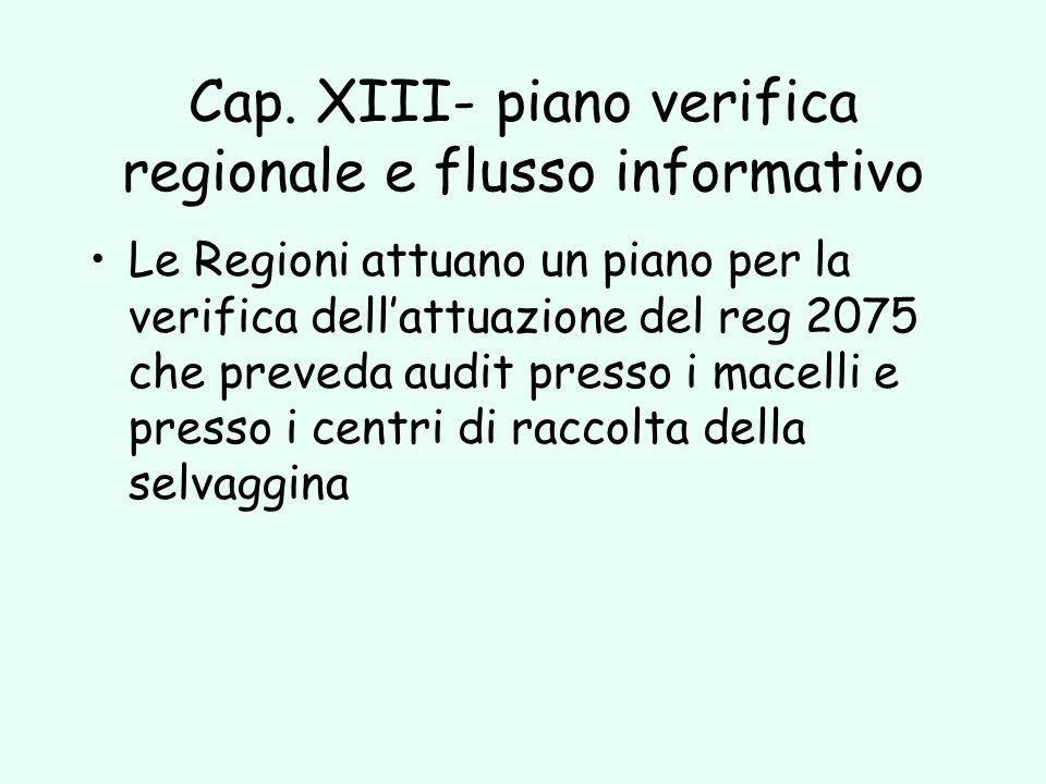 Cap. XIII- piano verifica regionale e flusso informativo
