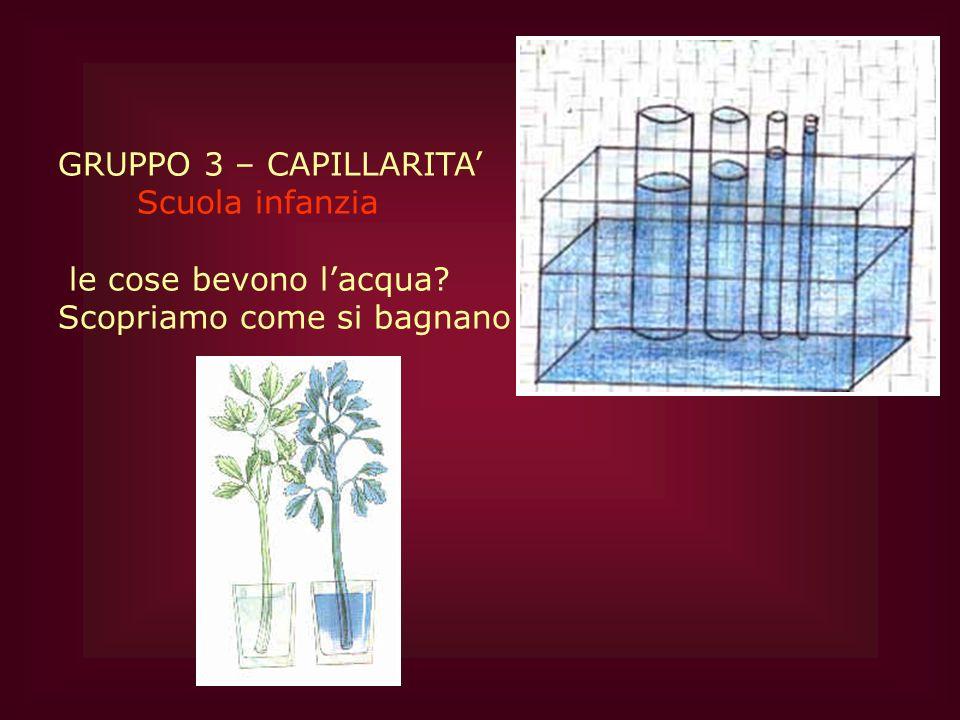GRUPPO 3 – CAPILLARITA' Scuola infanzia le cose bevono l'acqua Scopriamo come si bagnano