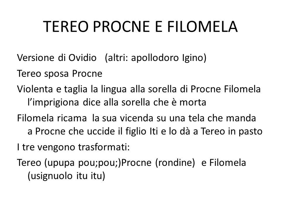 TEREO PROCNE E FILOMELA