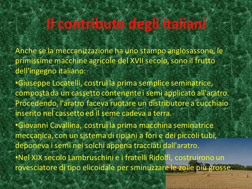 Il contributo degli italiani