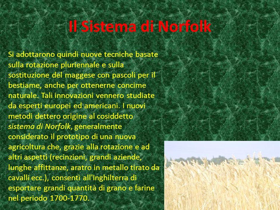 Il Sistema di Norfolk