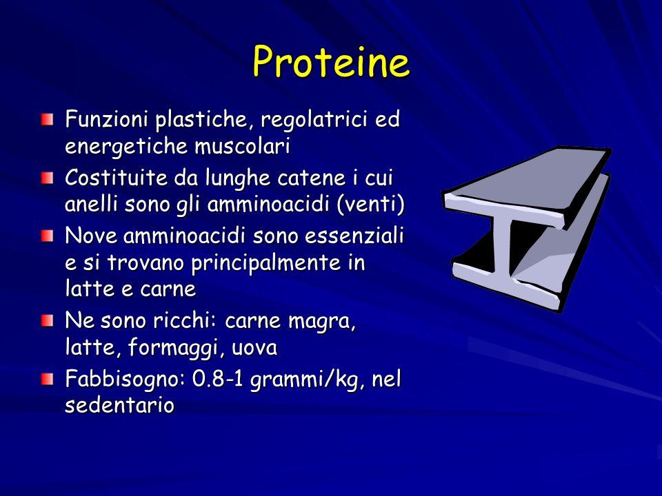 Proteine Funzioni plastiche, regolatrici ed energetiche muscolari