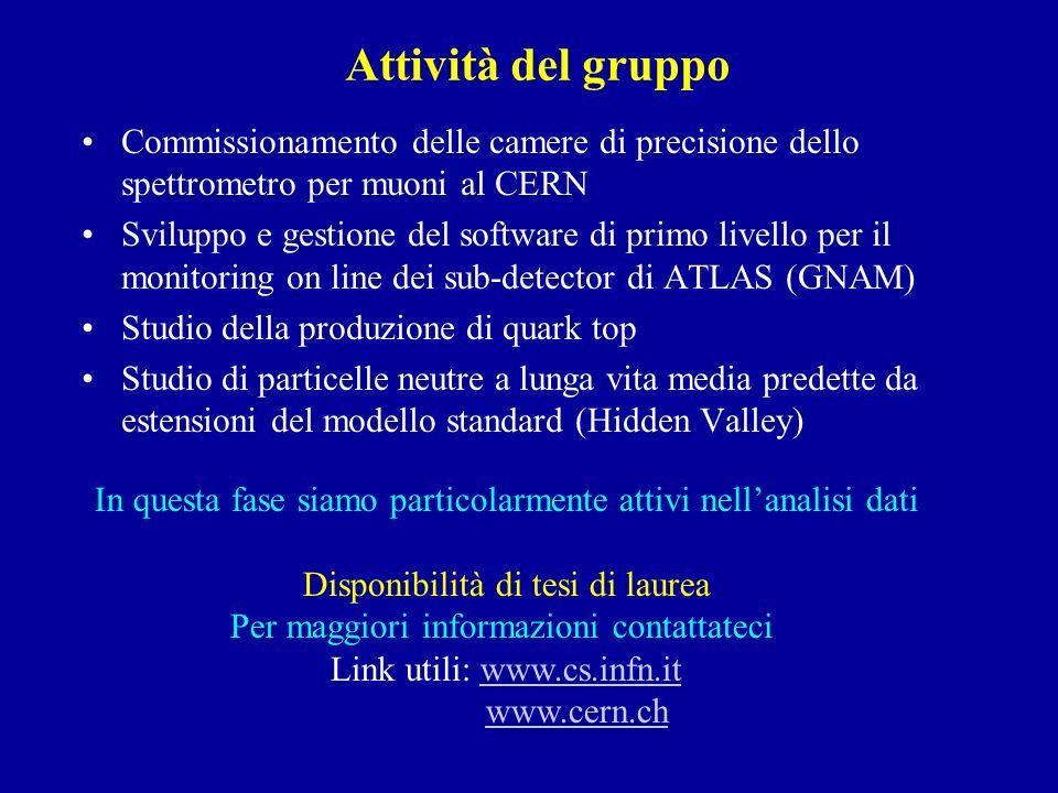 Attività del gruppo Commissionamento delle camere di precisione dello spettrometro per muoni al CERN.