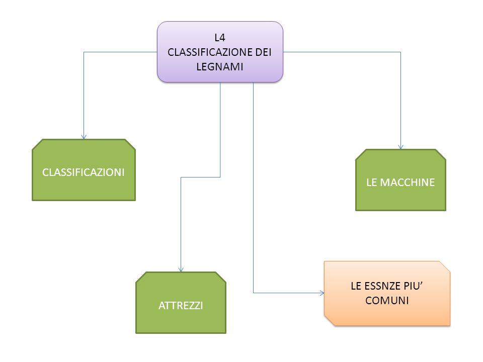 CLASSIFICAZIONE DEI LEGNAMI