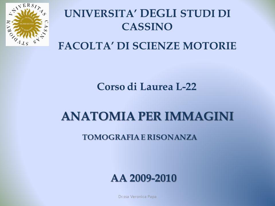 ANATOMIA PER IMMAGINI UNIVERSITA' DEGLI STUDI DI CASSINO