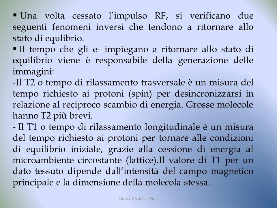 Una volta cessato l'impulso RF, si verificano due seguenti fenomeni inversi che tendono a ritornare allo stato di equlibrio.