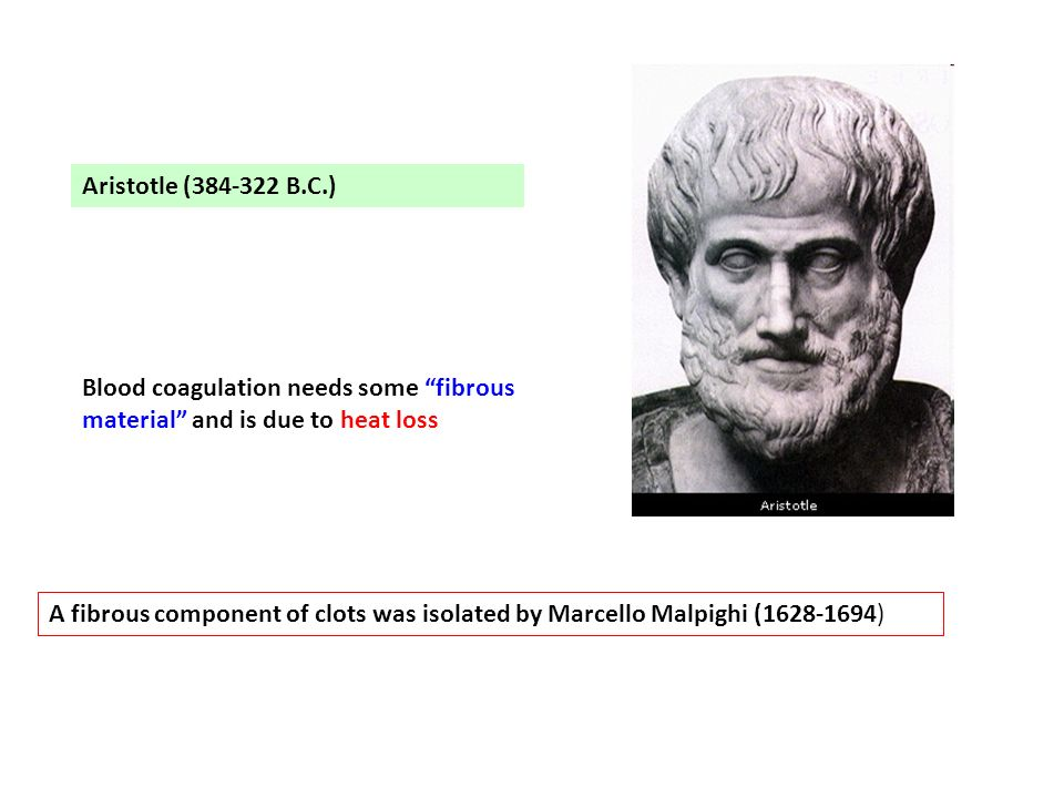 Aristotle (384-322 B.C.) Blood coagulation needs some fibrous material and is due to heat loss.