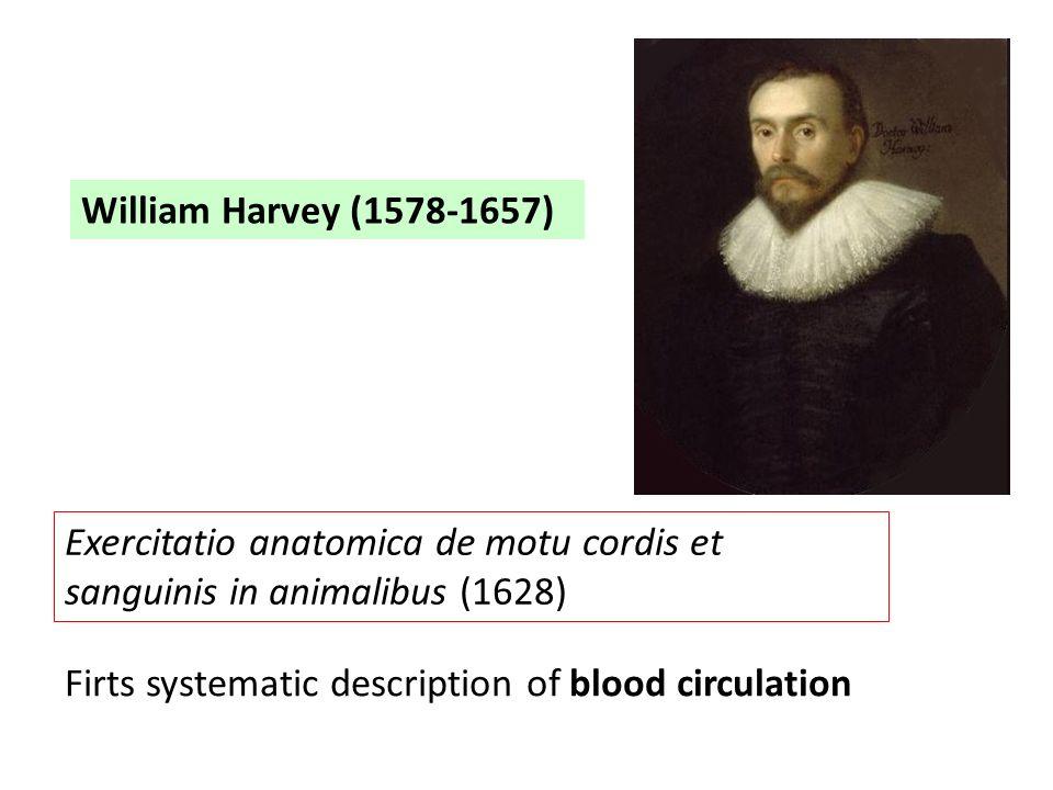 William Harvey (1578-1657) Exercitatio anatomica de motu cordis et sanguinis in animalibus (1628) Firts systematic description of blood circulation.