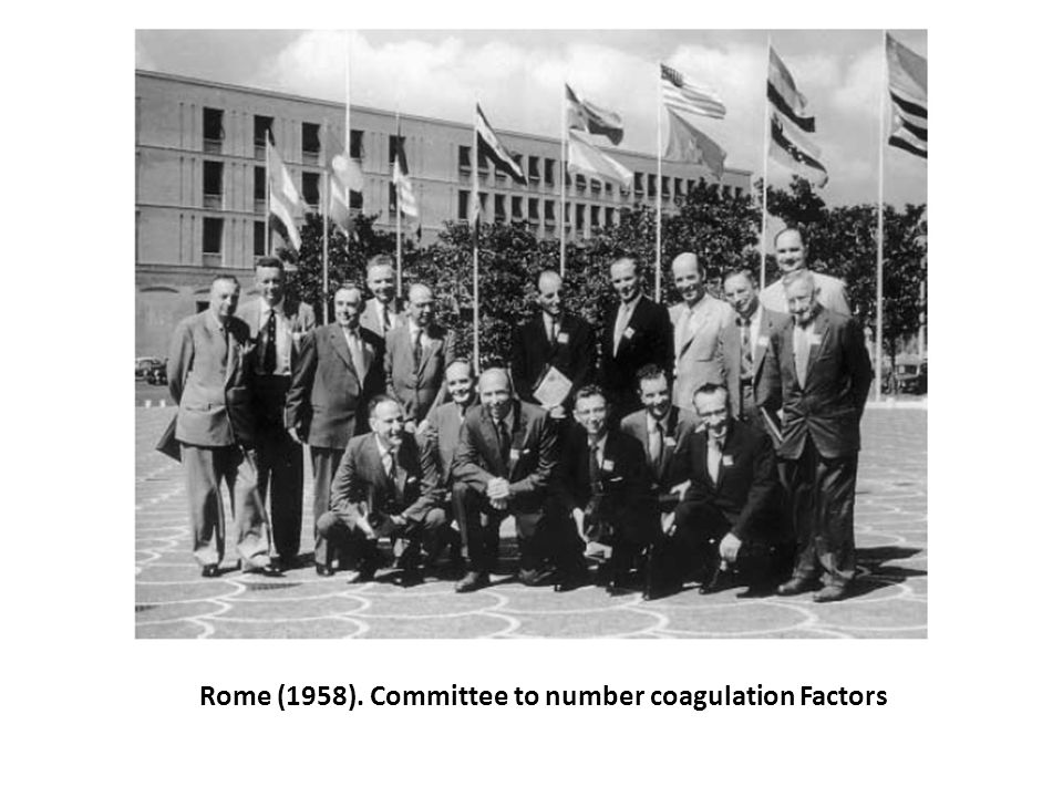 Rome (1958). Committee to number coagulation Factors