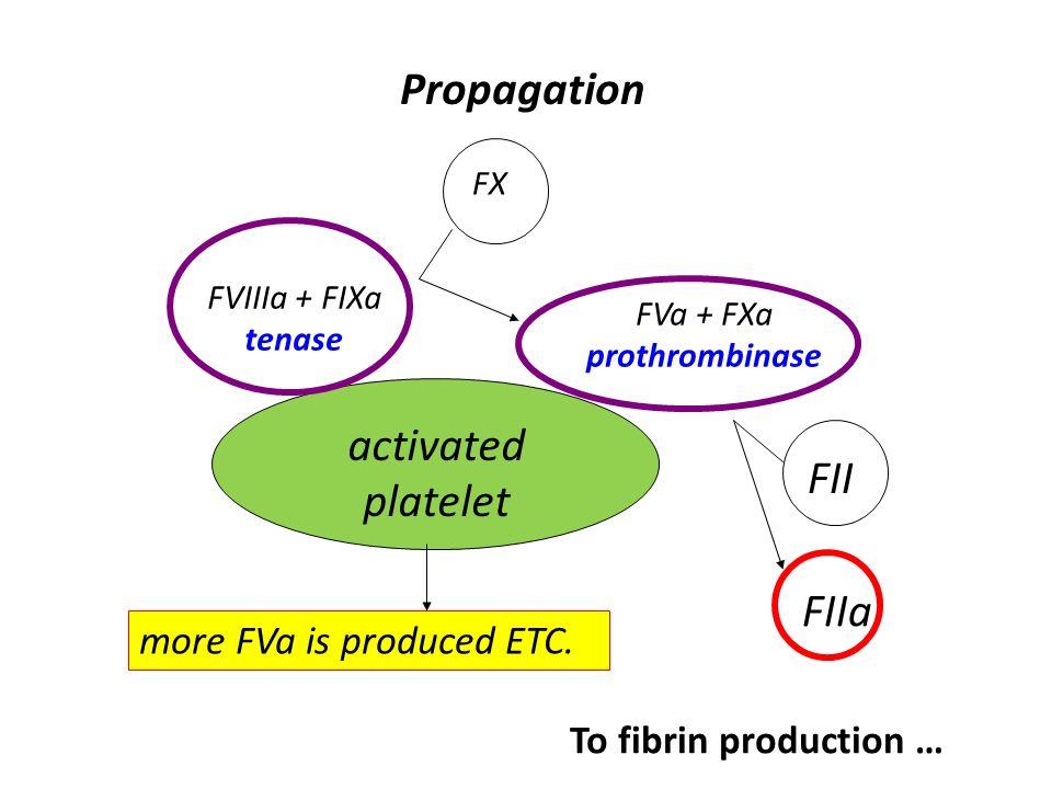 FVa + FXa prothrombinase