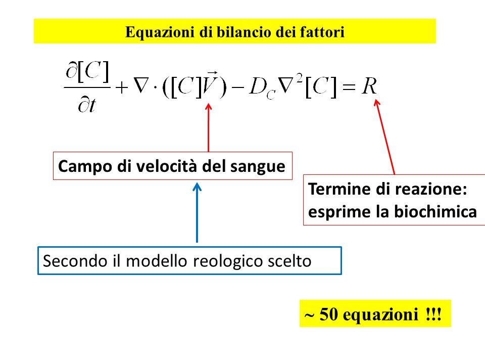 Equazioni di bilancio dei fattori