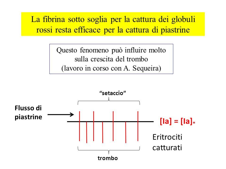 La fibrina sotto soglia per la cattura dei globuli rossi resta efficace per la cattura di piastrine