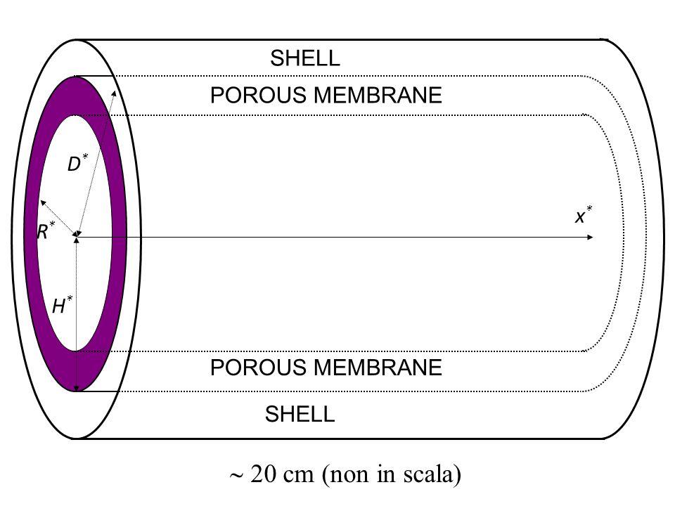  20 cm (non in scala) SHELL POROUS MEMBRANE D* x* R* H*