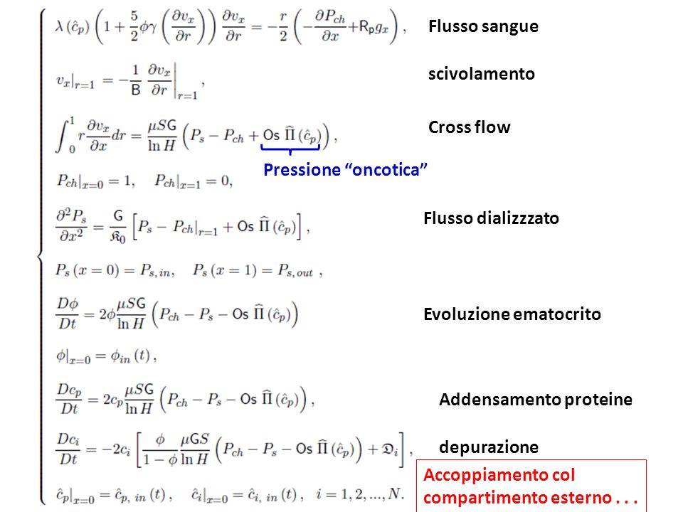 Flusso sangue scivolamento. Cross flow. Pressione oncotica Flusso dializzzato. Evoluzione ematocrito.