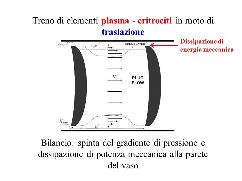 Treno di elementi plasma - eritrociti in moto di traslazione