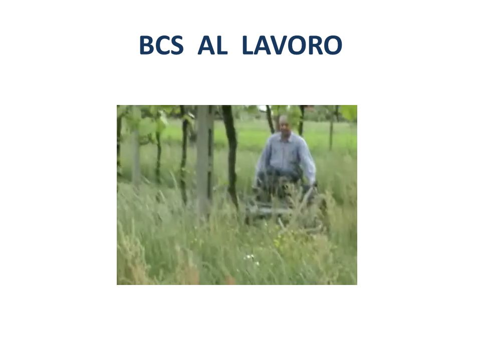 BCS AL LAVORO
