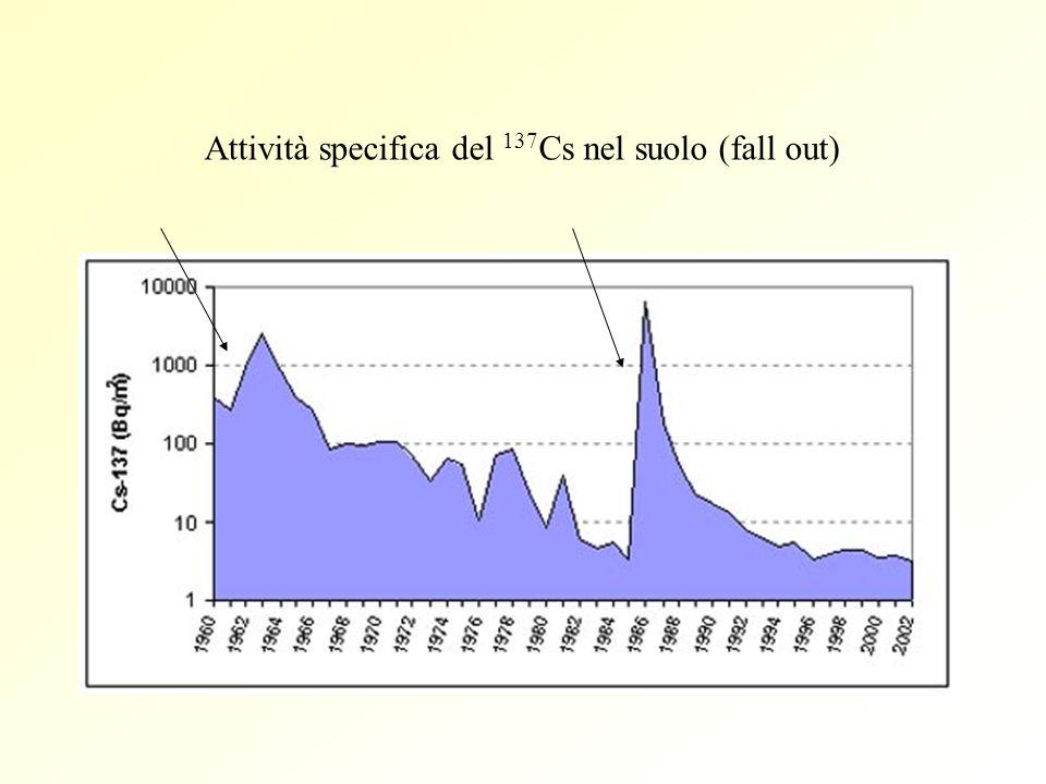 Attività specifica del 137Cs nel suolo (fall out)