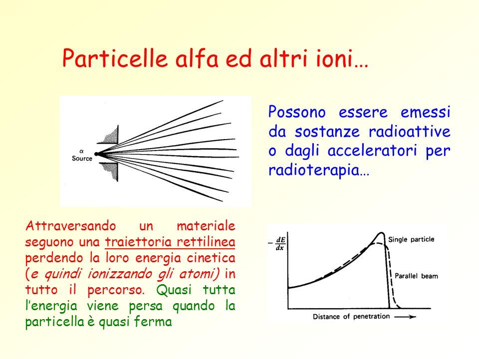 Particelle alfa ed altri ioni…