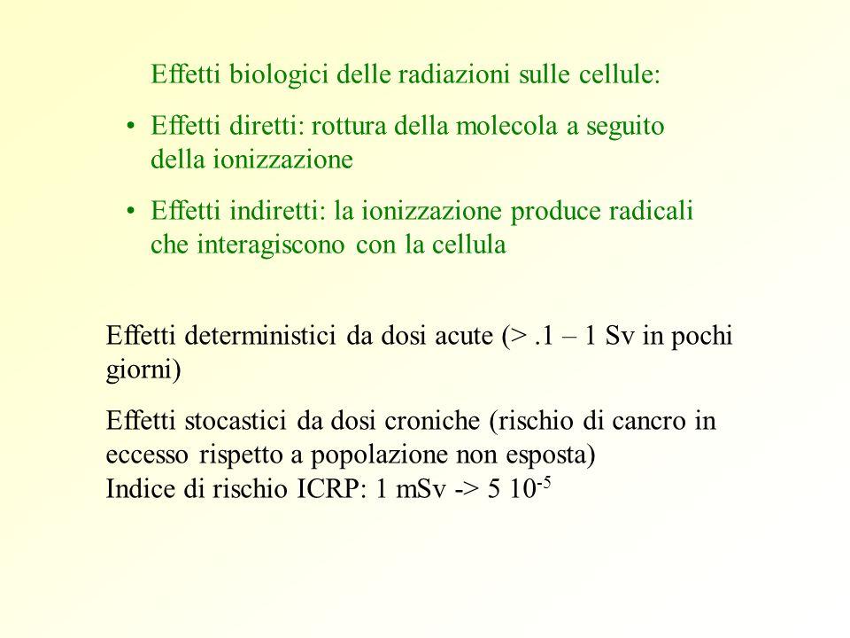 Effetti biologici delle radiazioni sulle cellule:
