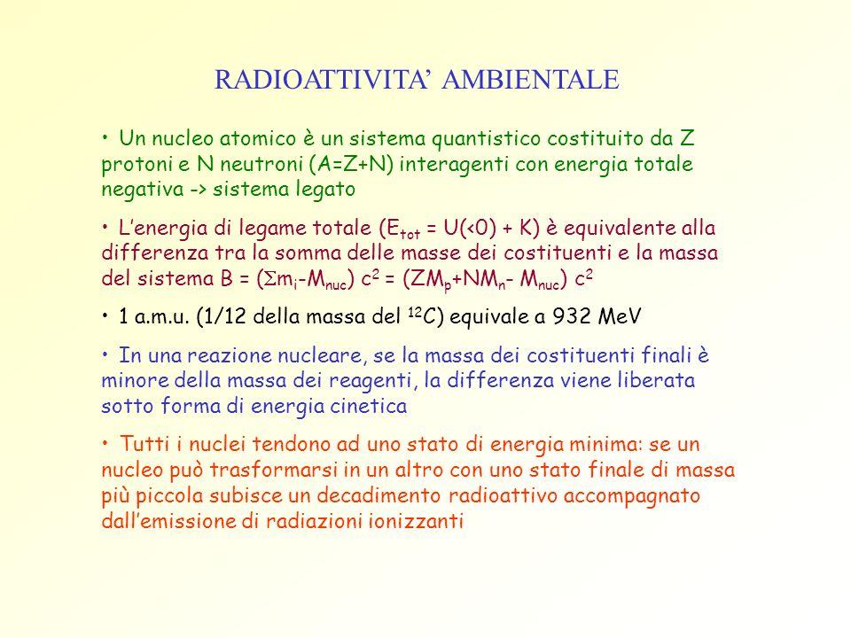 RADIOATTIVITA' AMBIENTALE