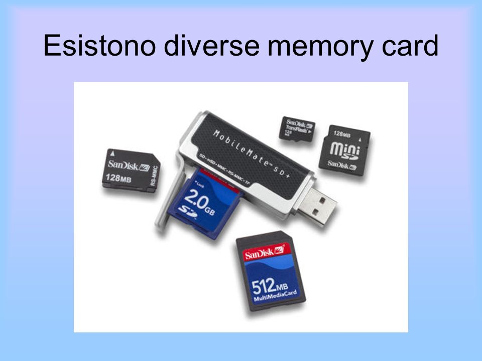Esistono diverse memory card
