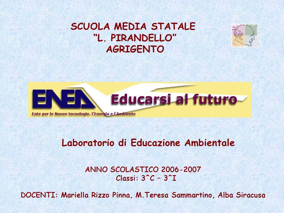DOCENTI: Mariella Rizzo Pinna, M.Teresa Sammartino, Alba Siracusa