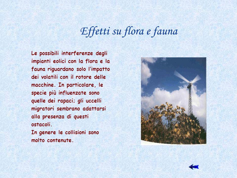 Effetti su flora e fauna