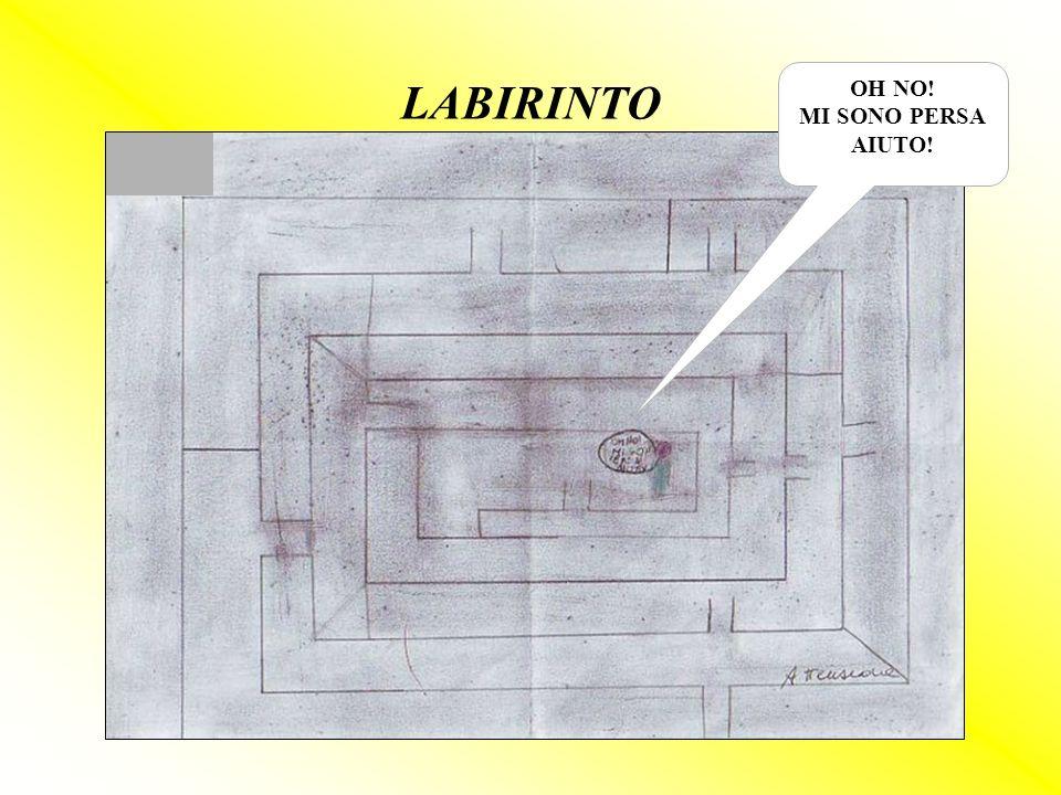 OH NO! MI SONO PERSA AIUTO! LABIRINTO