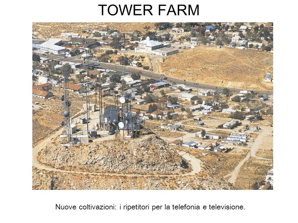 Nuove coltivazioni: i ripetitori per la telefonia e televisione.