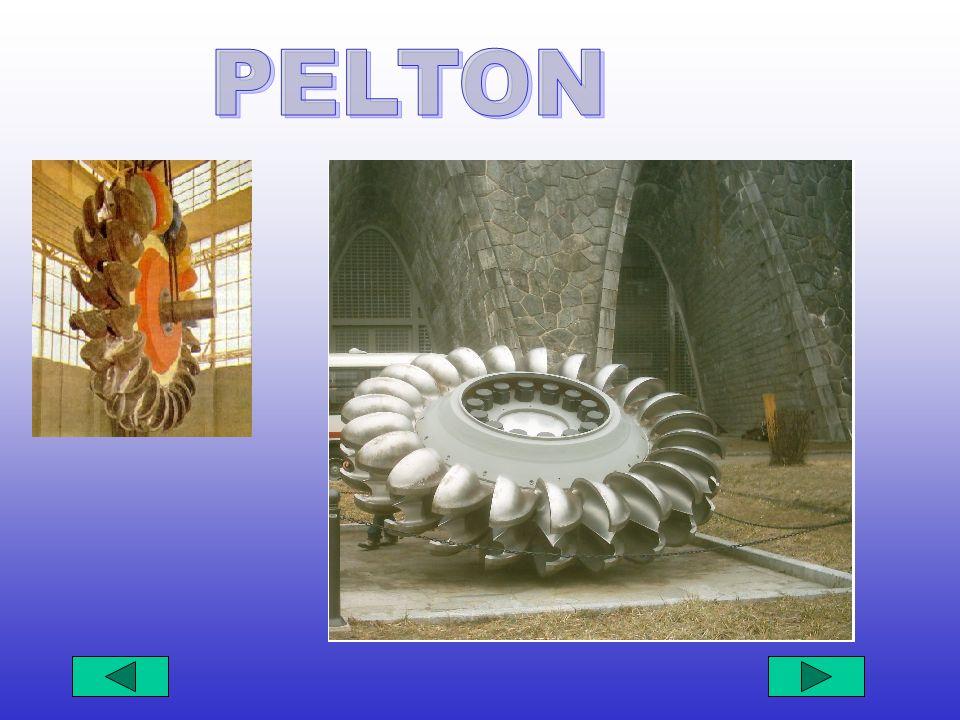 PELTON PELTON