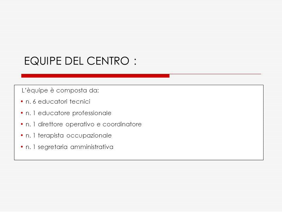 EQUIPE DEL CENTRO : L'èquipe è composta da: n. 6 educatori tecnici