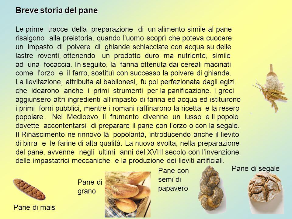 Breve storia del pane