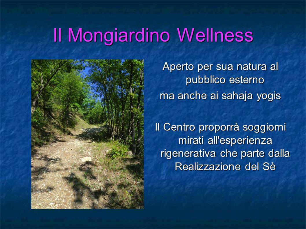 Il Mongiardino Wellness